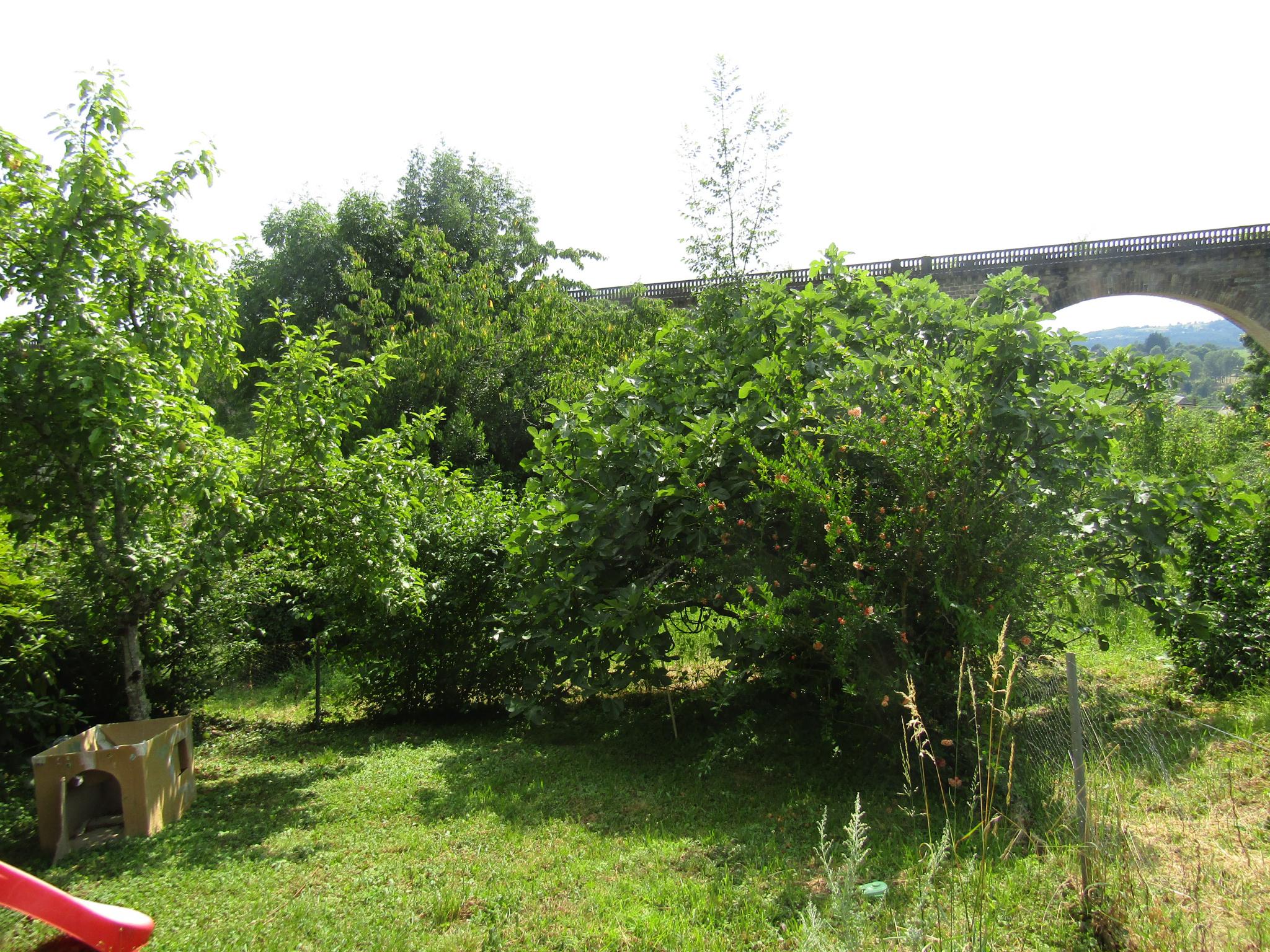 Abri De Jardin Atypique vente maison de bourg atypique à rénover avec jardin, grange